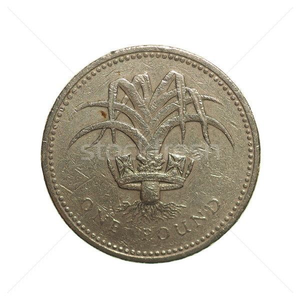 One Pound coin Stock photo © claudiodivizia