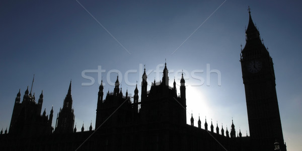 Huizen parlement goth nacht silhouet Stockfoto © claudiodivizia