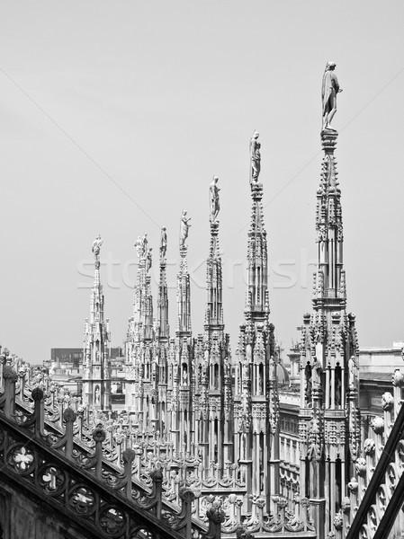 Милан Готский собора Церкви Италия Сток-фото © claudiodivizia