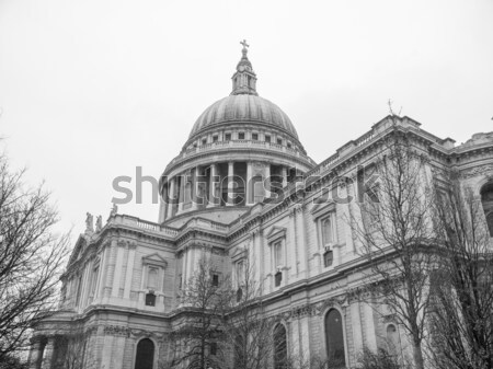 St Paul Cathedral London Stock photo © claudiodivizia