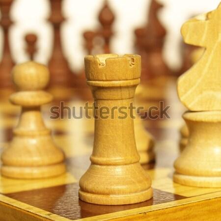 Chessboard Stock photo © claudiodivizia