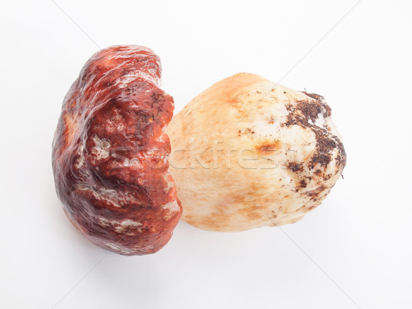 Photo stock: Cèpes · cèpes · penny · chignon · cuisine