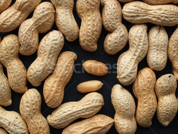 Peanut Stock photo © claudiodivizia
