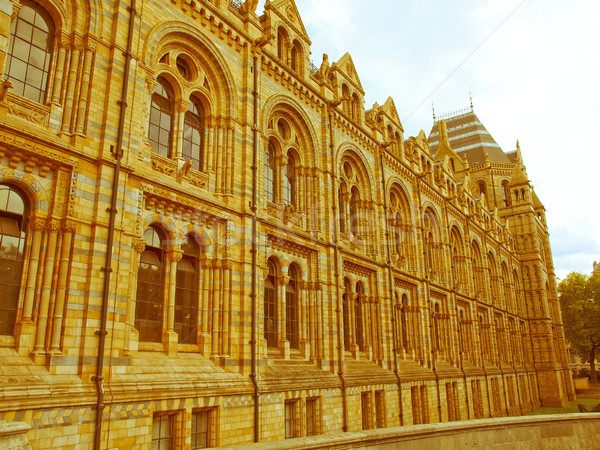 Retro bakıyor doğal tarih müze Londra Stok fotoğraf © claudiodivizia