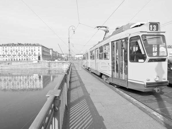Turin Stock photo © claudiodivizia