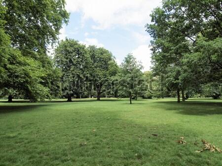 Jardines Londres parque árbol árboles Foto stock © claudiodivizia