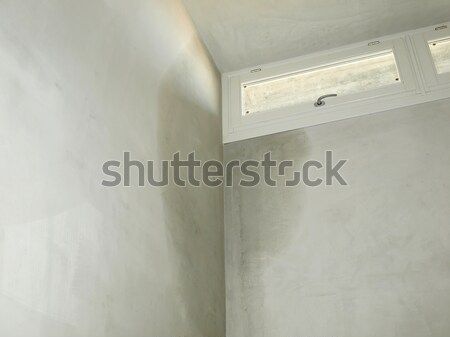 Damp moisture Stock photo © claudiodivizia
