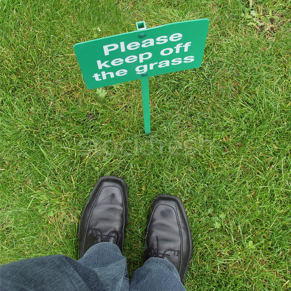 трава знак луговой ног фон Сток-фото © claudiodivizia