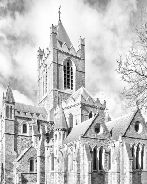 キリスト 教会 ダブリン 古代 ゴシック 大聖堂 ストックフォト © claudiodivizia