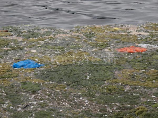 Water pollution Stock photo © claudiodivizia
