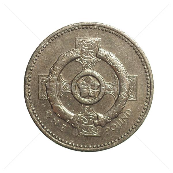 One Pound coin Stock photo © claudiodivizia