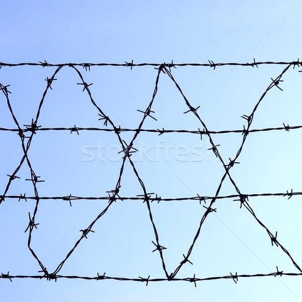 Barbed wire Stock photo © claudiodivizia