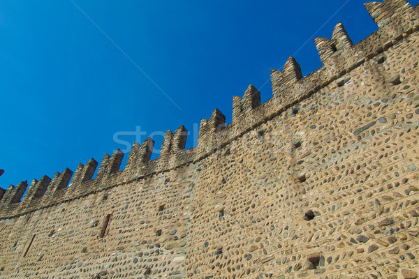 Castello Medievale, Turin, Italy Stock photo © claudiodivizia