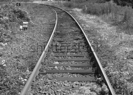 Railway railroad tracks Stock photo © claudiodivizia