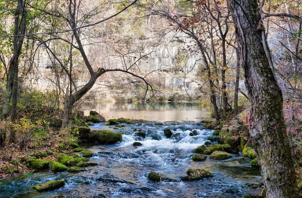 little stream in missouri Stock photo © clearviewstock