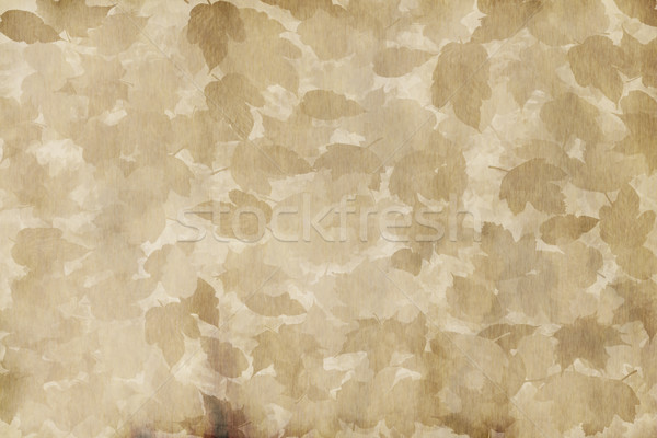 old worn leafy parchment  Stock photo © clearviewstock