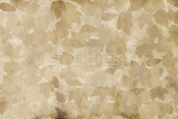 öreg elnyűtt pergamen nagy papír textúra Stock fotó © clearviewstock