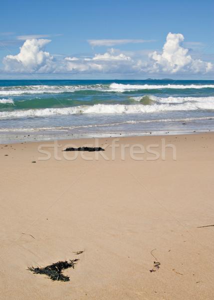Mooie strand golven algemeen tropische zandstrand Stockfoto © clearviewstock