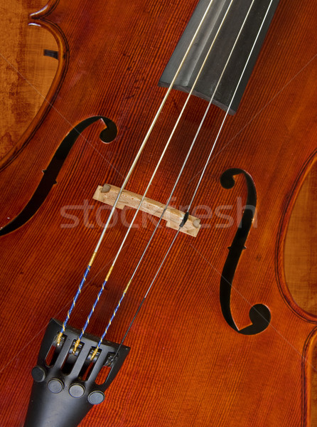 cello or violin Stock photo © clearviewstock