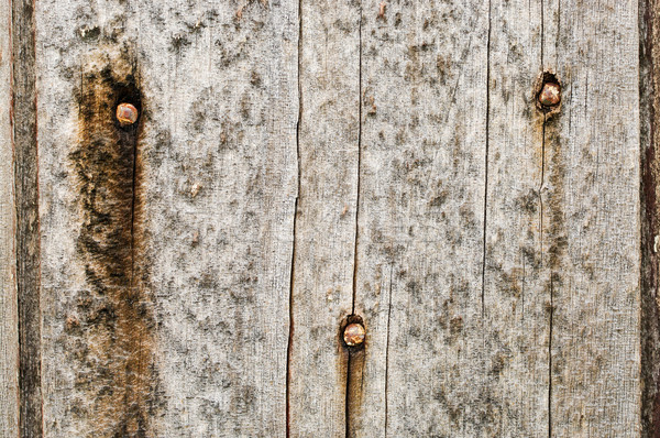 old grungy wood background texture Stock photo © clearviewstock