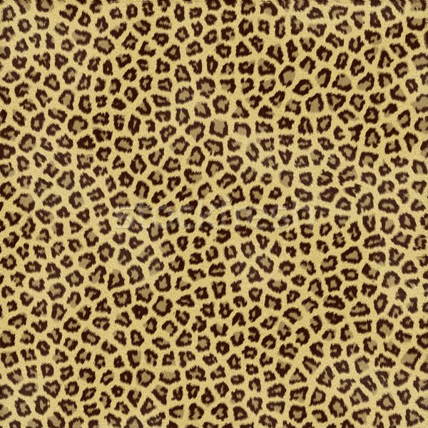 Stockfoto: Luipaard · huid · groot · illustratie · jaguar · bont
