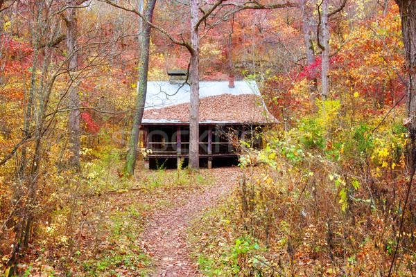 кабины Миссури старые осень древесины цветами Сток-фото © clearviewstock