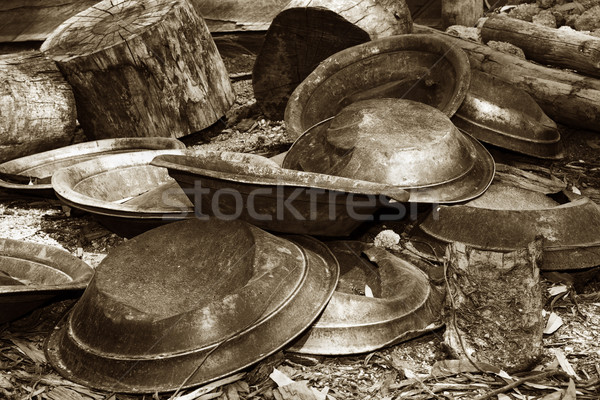 gold pans in sepia Stock photo © clearviewstock