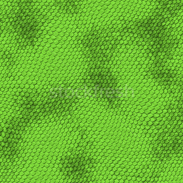 green snake skin Stock photo © clearviewstock
