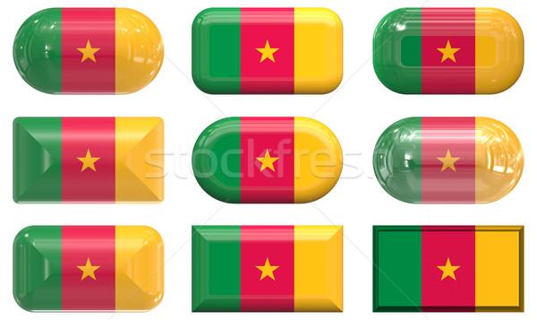 девять стекла Кнопки флаг Камерун Сток-фото © clearviewstock