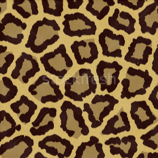 leopard spots Stock photo © clearviewstock