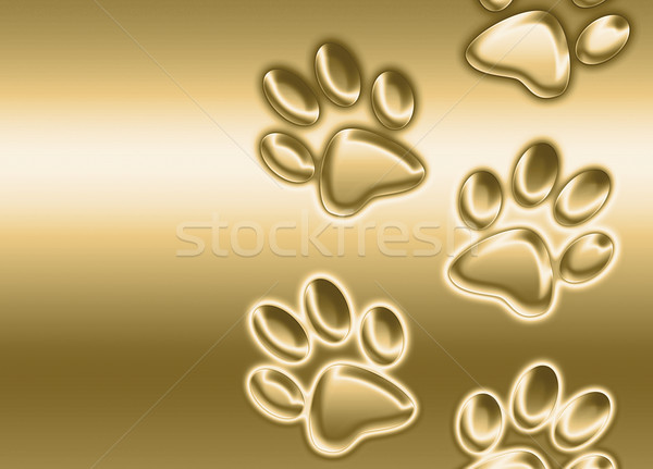 golden paw prints Stock photo © clearviewstock
