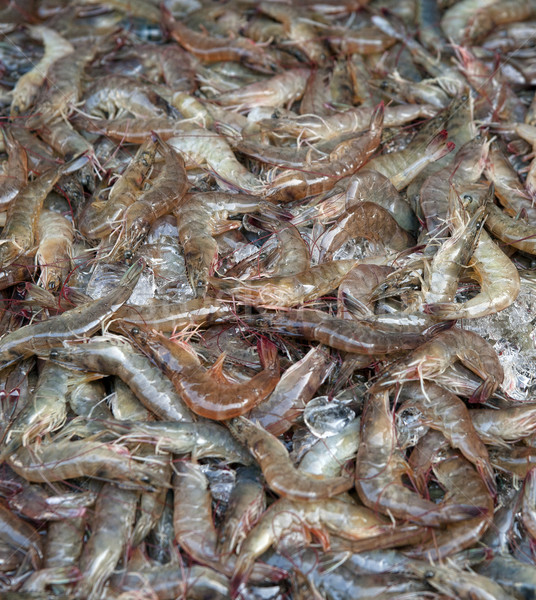 Fraîches crevettes alimentaire Photo stock © clearviewstock