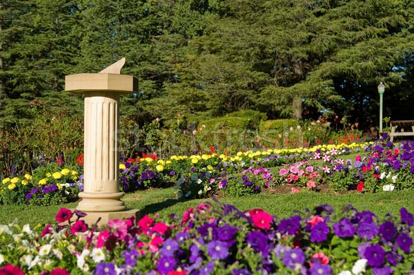 Zegar słoneczny ogród kwiaty Zdjęcia stock © clearviewstock