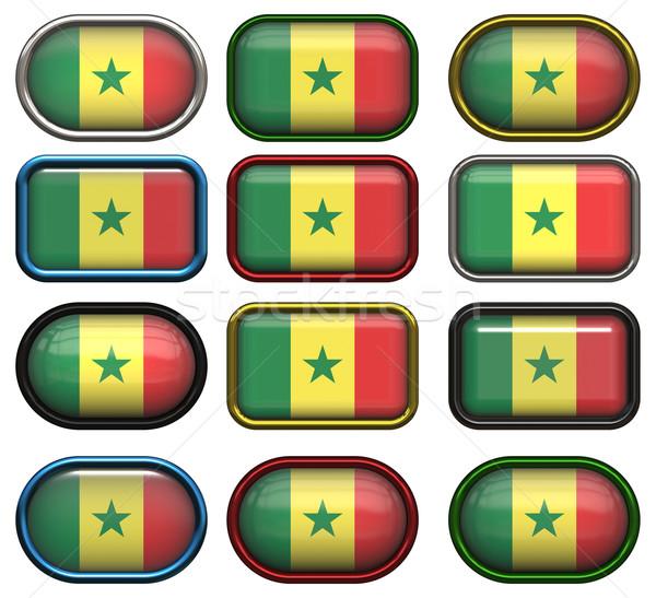 двенадцать Кнопки флаг Сенегал Сток-фото © clearviewstock