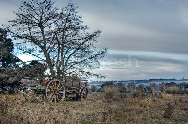 old cart in field Stock photo © clearviewstock