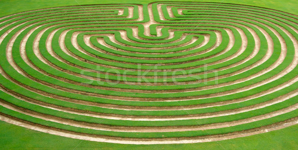 garden maze Stock photo © clearviewstock
