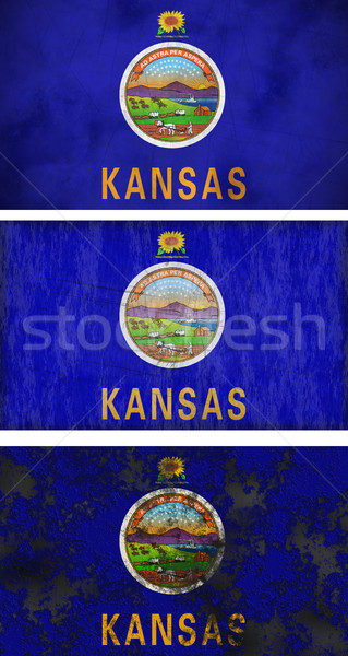 Flag of Kansas Stock photo © clearviewstock