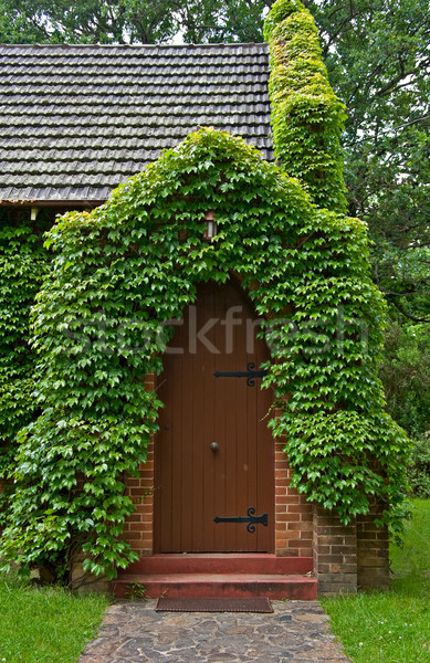 vine covered church building Stock photo © clearviewstock