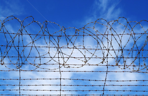 restrictions barbed wire blue sky Stock photo © clearviewstock