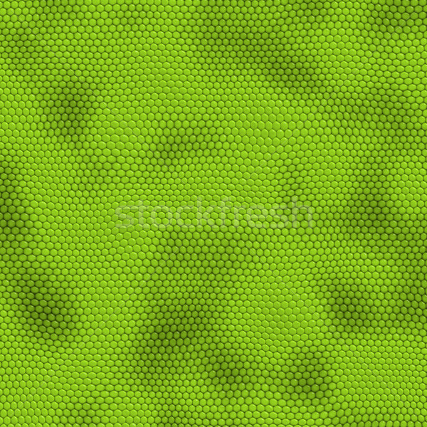 iquana skin Stock photo © clearviewstock