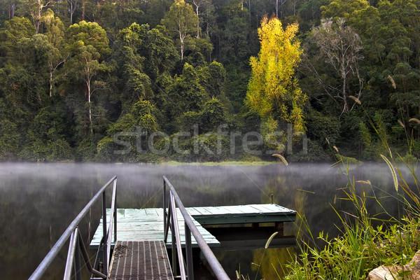 туман воды деревья озеро осень тумана Сток-фото © clearviewstock