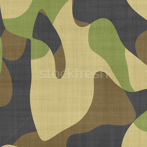 camouflage macro Stock photo © clearviewstock