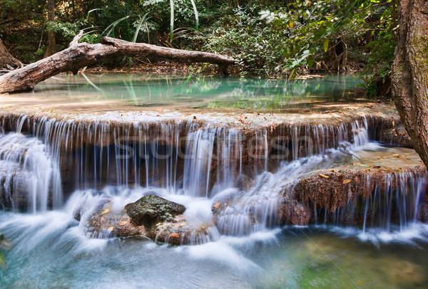 Gyönyörű vízesés víz fa tájkép levél Stock fotó © clearviewstock