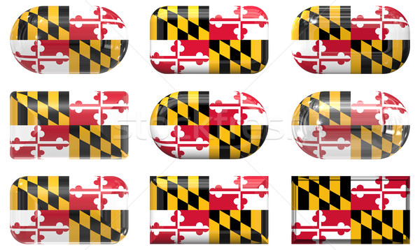 nine glass buttons of the Flag of Maryland Stock photo © clearviewstock