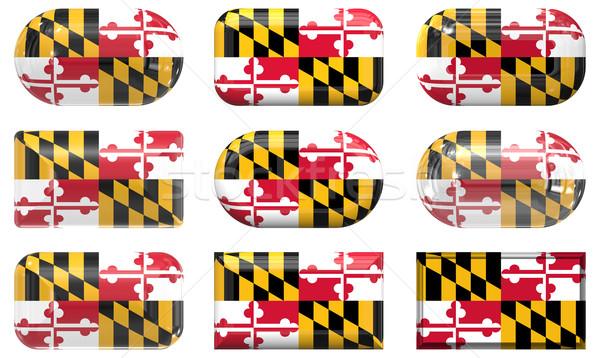 Dziewięć szkła przyciski banderą Maryland Zdjęcia stock © clearviewstock