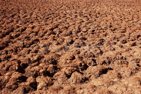 Sıcak çöl güneş kuru kırmızı Stok fotoğraf © clearviewstock