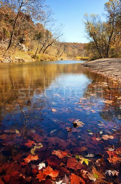 Sonbahar yaprakları su akım nehir Missouri doğa Stok fotoğraf © clearviewstock