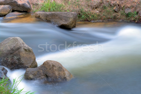 gentle rivers flows  Stock photo © clearviewstock