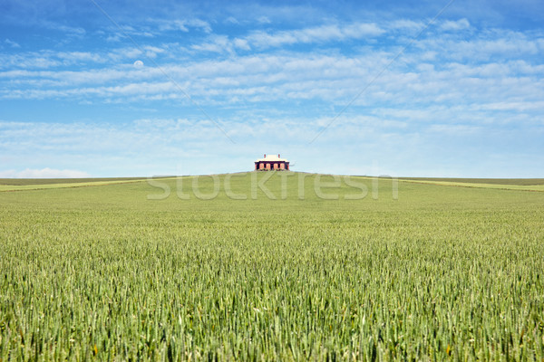 Oude huis veld tarwe huis natuur land Stockfoto © clearviewstock