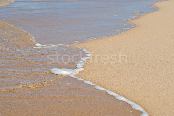gentle water Stock photo © clearviewstock